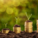 5 Ways to Grow Your New Franchise